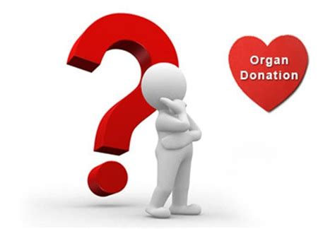 Essay organ donation introductions